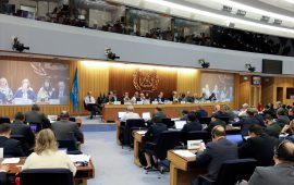 UAE wins Category B membership in IMO Council