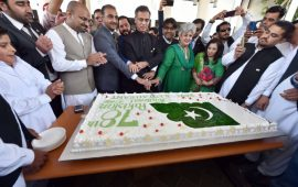 Pakistan expats in the UAE gather to celebrate Pakistan National Day