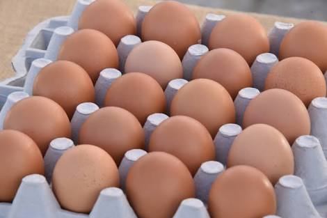 MOCCAE warns against Salmonella-contaminated eggs from the US