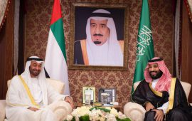Forty four projects proposed in the historic Saudi-Emirati Coordination Council meet